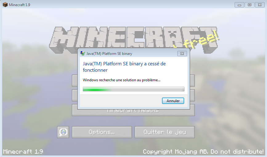 Java tm se binary minecraft. Java(TM) Platform SE Binary is not