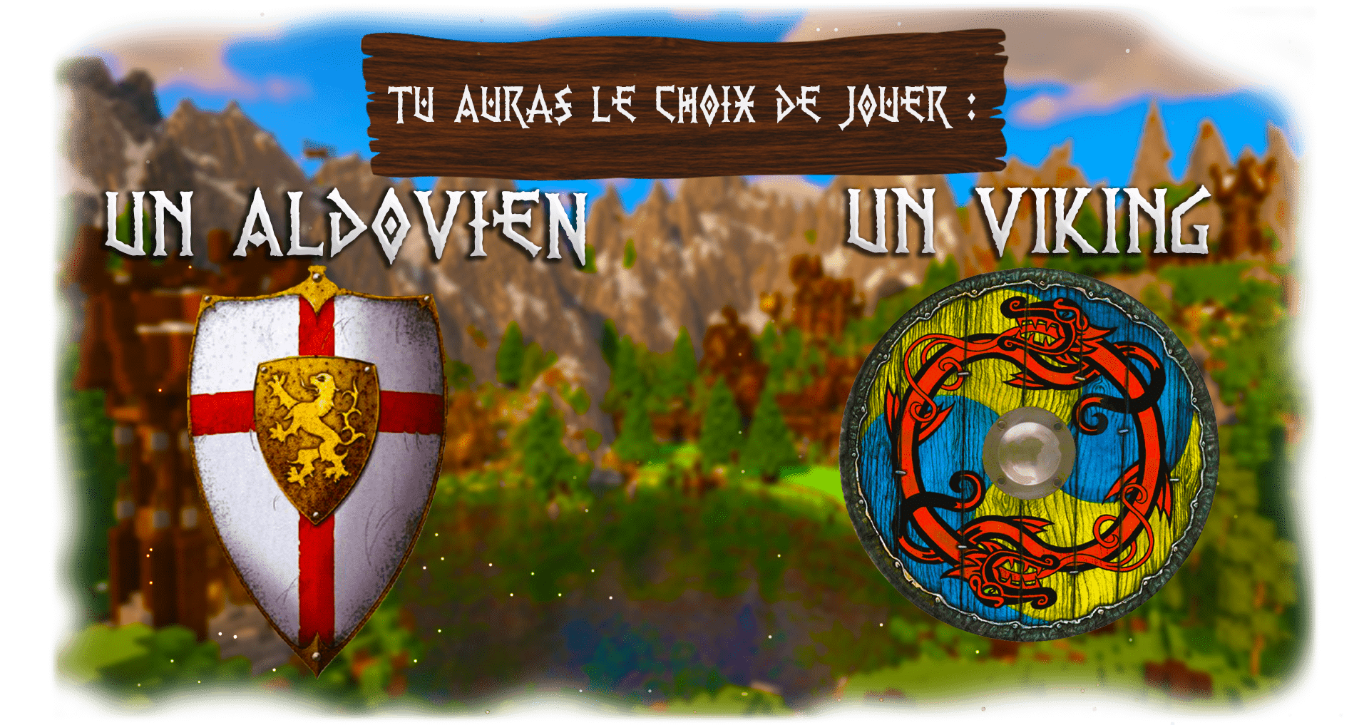 banniere viking 2-min (1).png