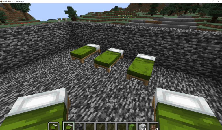 Minecraft-1.16.5-Singleplayer-07_03_2021-10_01_45-pm.png