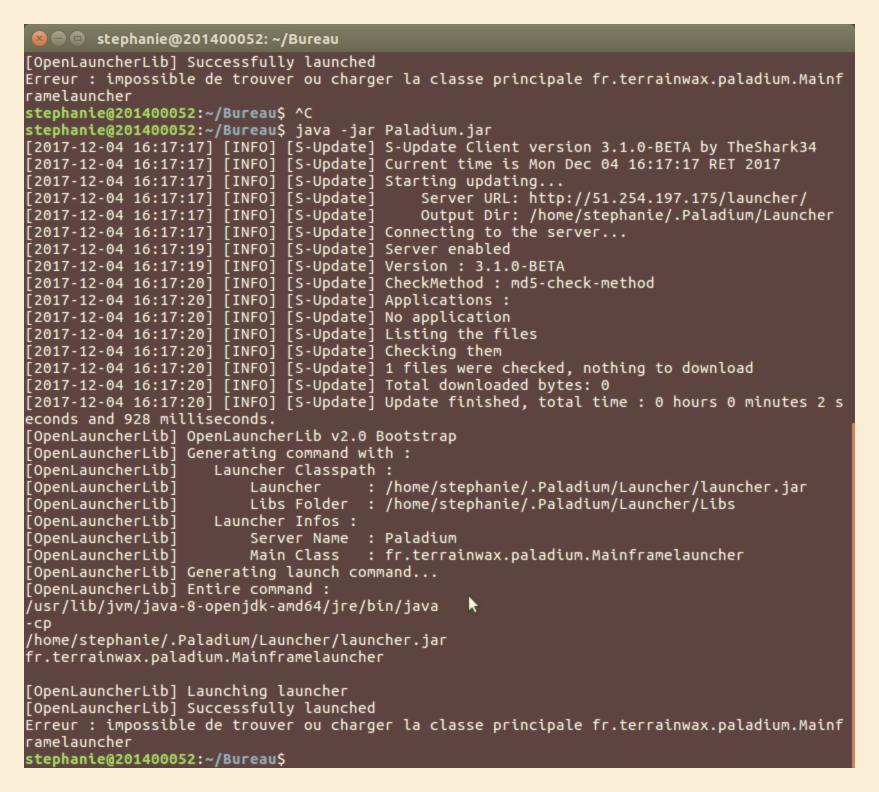 Mod Installation Palladium Linux Help Minecraft Fr Forum