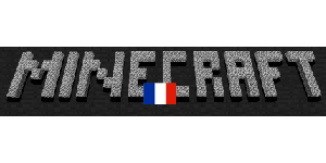 Blog sur Minecraft