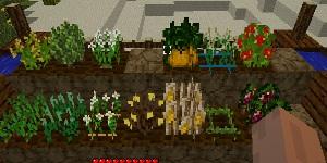 Pam's HarvestCraft [1.7.3]