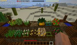 Les plantes adultes