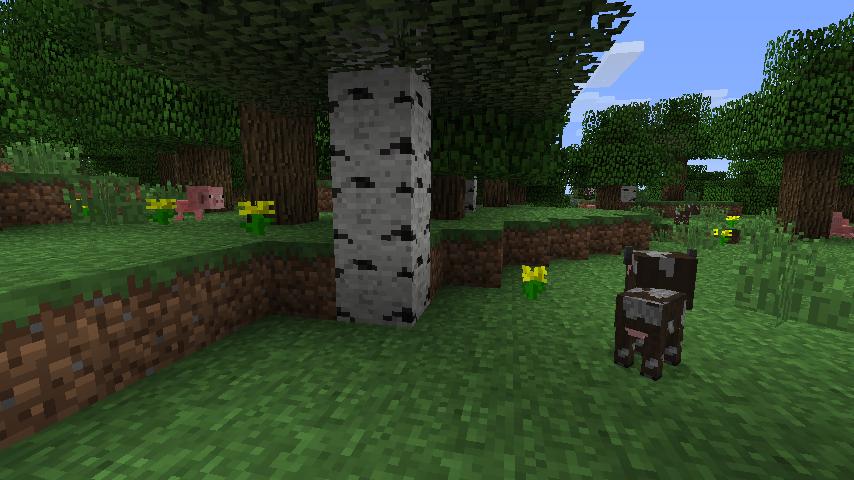 salle enchantement minecraft
