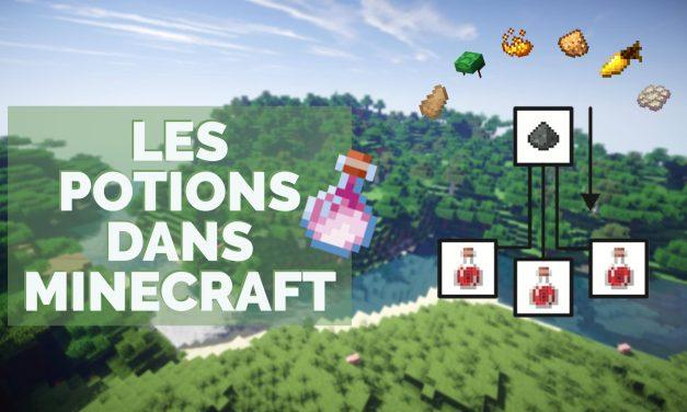 Les potions dans Minecraft