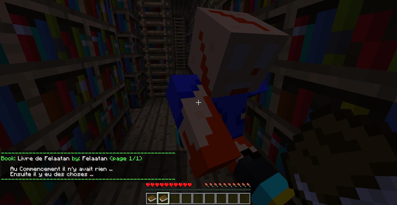 2012 01 08 19.20.03 [1.1] Les livres dans Minecraft