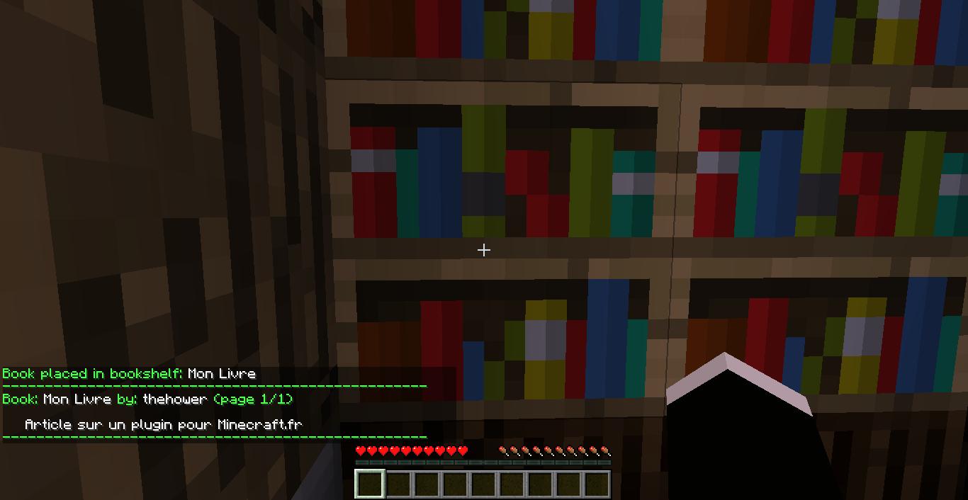2012 01 08 19.21.54 [1.1] Les livres dans Minecraft