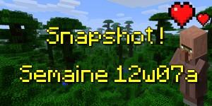 Snapshot 12W07A/12W07B