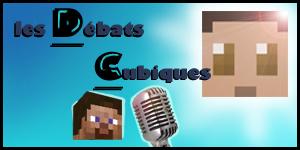 DC 1 : Youtubers, l'essence même de Minecraft ?