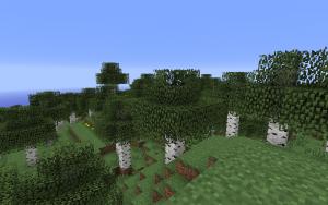 Récapitulatif 1.7.2 300px-Birch_forest