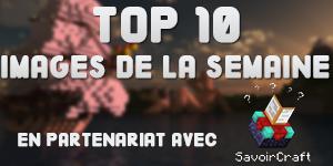 TOP 10 des Images de la semaine #2