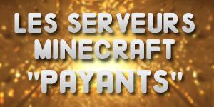 Le point sur les serveurs Minecraft «Payants»