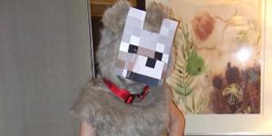 TOP 10 des cosplays sexys de Minecraft