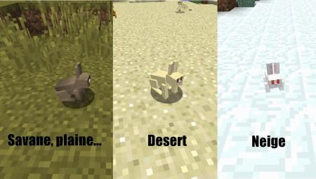 Sachez que dans les savanes et les plaines, il existe plusieurs types de lapin (noir, tacheté, etc...)