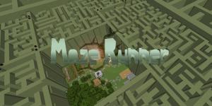 Minia maze