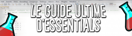 Essentials, le guide ultime • Minecraft fr