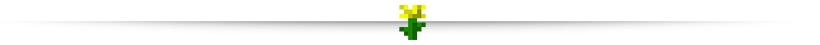 Ligne de séparation fleur jaune