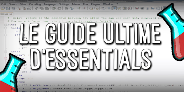 Plugin • Essentials, le guide ultime • Minecraft fr