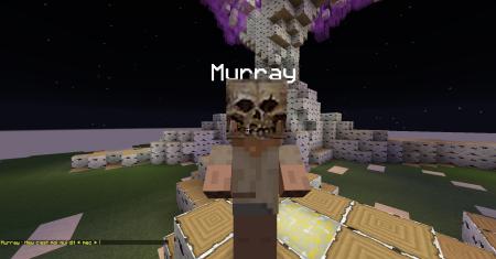 Meet the Murray
