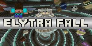 Elytra Fall