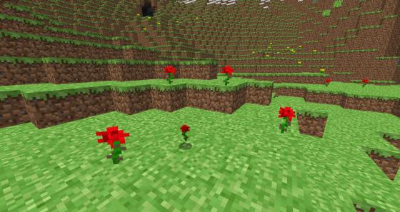 Une clairière fleurie