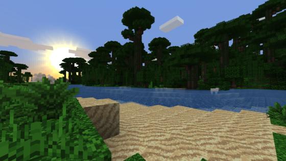 Une jungle au coucher de soleil