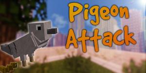 Pigeon Attack !