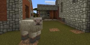 vous pouvez d'ailleurs découvrir le nouveau visage du mouton avec cette image.