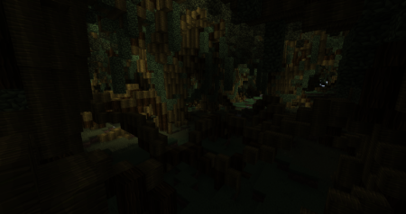 Cette forêt est juste IMMENSE