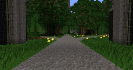 Ça ressemble presque à l'entrée de la forêt du Slendermen...
