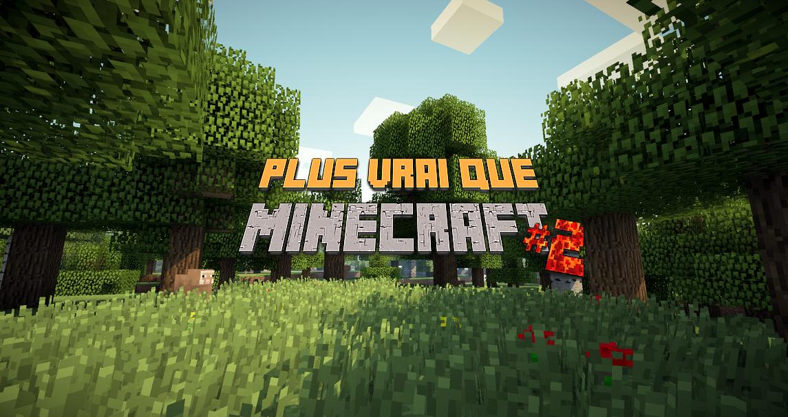 Plus vrai que Minecraft #2