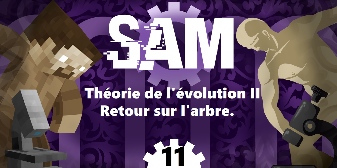 [SAM]#11 – Théorie de l'Évolution 2 : Retour sur l'arbre.