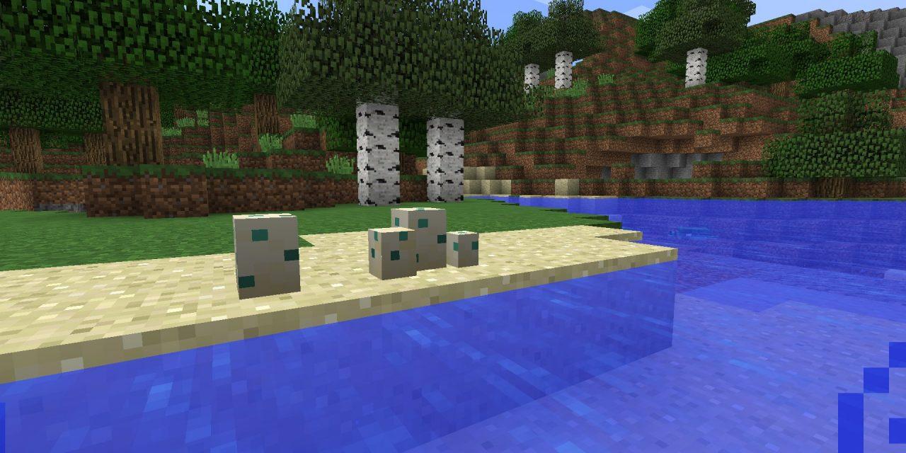 Les tortues pondront des œufs en 1.14 !