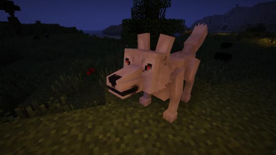 C'est juste un loup, mais très féroce !