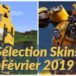 Meilleurs Skins Minecraft Février 2019