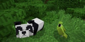 seed minecraft bedrock 1.9 jungle panda perroquet
