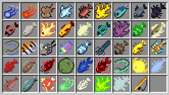 43 nouveaux poissons