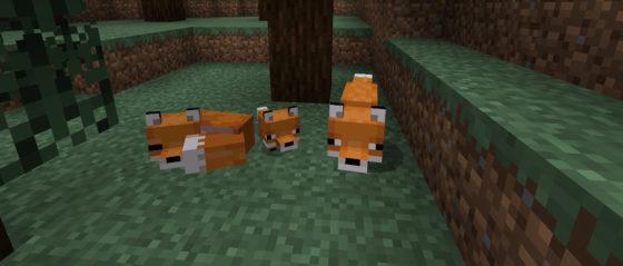 minecraft snapshot 19w07a renard