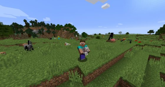 carry on mod minecraft loup