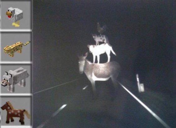 meme minecraft poule chat loup cheval