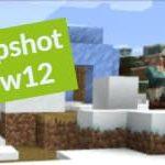 Minecraft 1.14 : Snapshot 19w12b