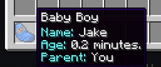 age bébé mod minecraft mca