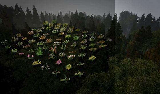 nouveaux blocs herbes conquest reforged