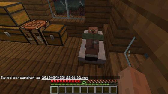 villageois dans lit minecraft