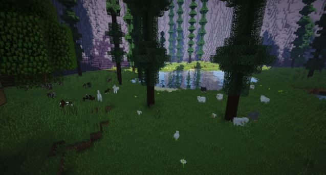 map minecraft aquarii 51 foret