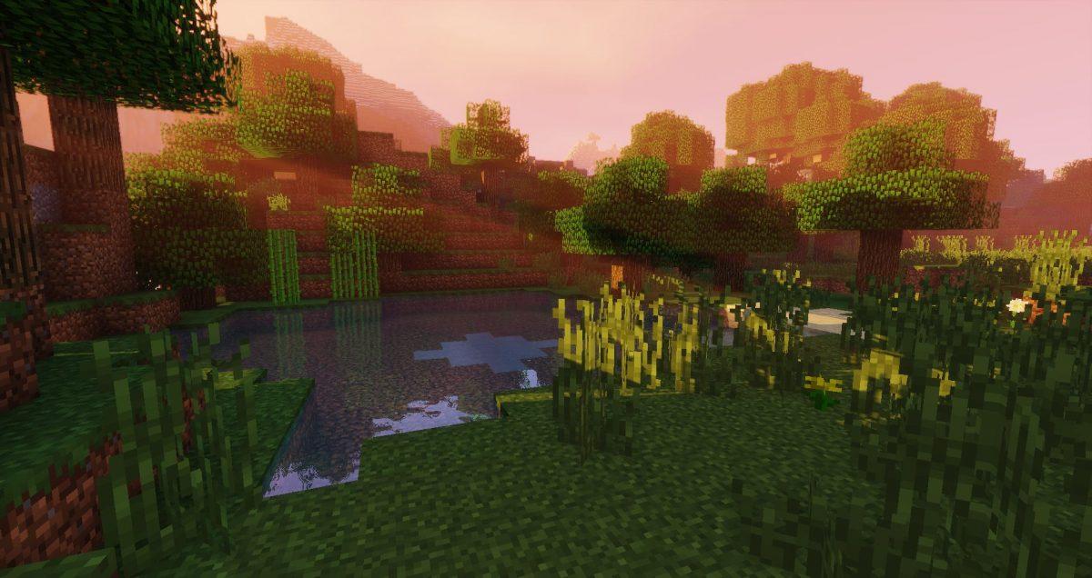 sildur's shaders minecraft herbe eau