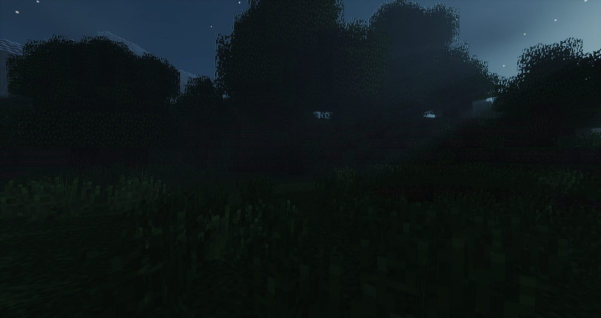 sildur's shaders minecraft nuit
