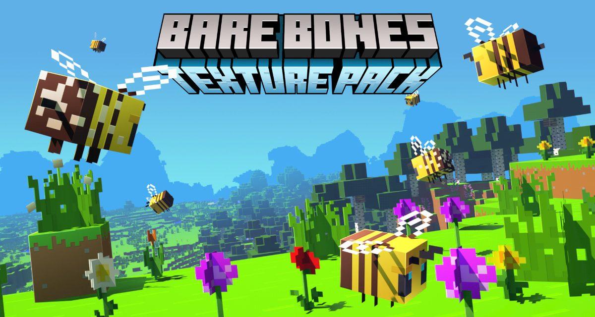 Bare Bones – Pack de Textures – 1.7 → 1.16