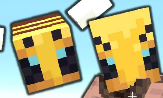 Vidéo : Minecraft, mais tout est remplacé par des abeilles !