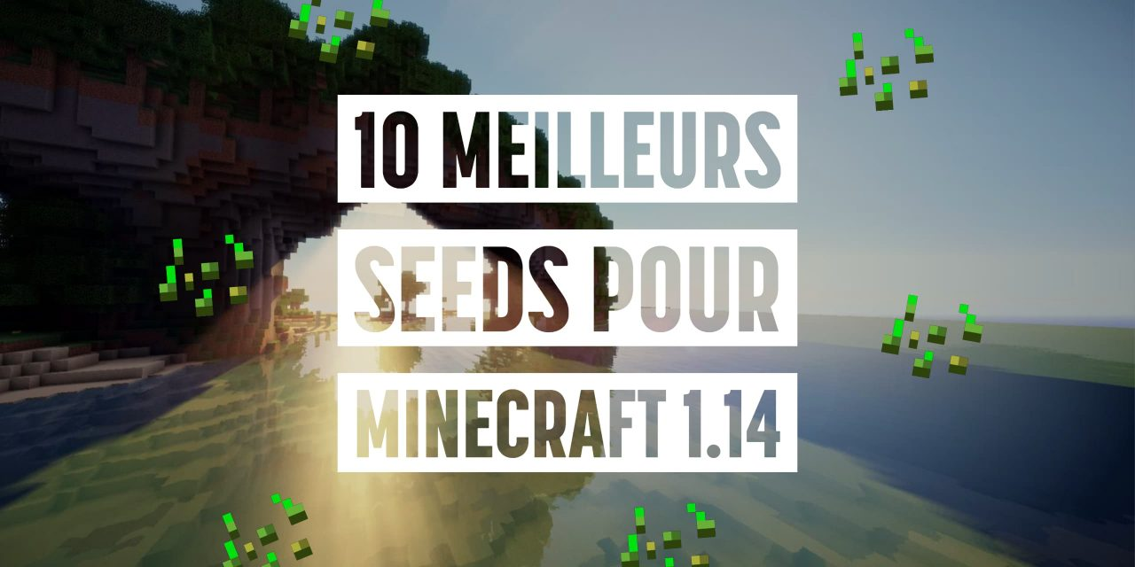 Les 10 meilleurs seeds pour Minecraft 1.14